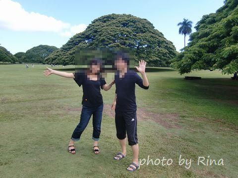 この木なんの木と記念撮影